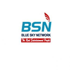 BSN Champion Remotes